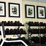 Exercise Room – Free Weights