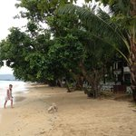 Photo de Panwa Beach Resort, Phuket