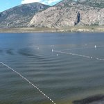 Φωτογραφία: Coast Osoyoos Beach Hotel