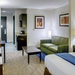 ‪Holiday Inn Express Hotel & Suites Overland Park‬