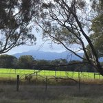View of the Grampians from the house