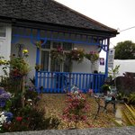 Bilde fra The Beech Tree Guest House