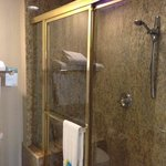 Business Suite: HUGE Shower