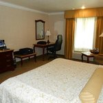 Foto de BEST WESTERN PLUS Newport Mesa Inn