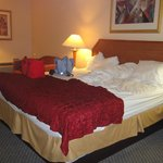 Foto van Baymont Inn & Suites Florida Mall/Airport West
