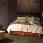 DoubleTree Suites by Hilton Huntsville-South Foto