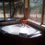 Jacuzzi with view of reserve and animals