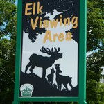 Elk Viewing Area, Gaylord, MI