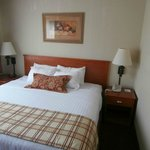 BEST WESTERN PLUS University Park Inn & Suites resmi