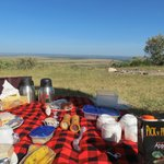 Picnic after the Rhino Sanctuary visit