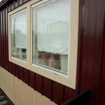 loved the big windows in the railcars