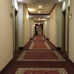 Hampton Inn Fort Stockton Foto