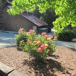 Photo de The Creekside Bed & Breakfast