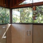 Shower in canopy room