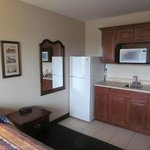 Kitchenette area, large frisge and microwave and counter (no stovetop)