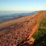 Cavendish Beach Cottages의 사진
