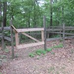 The trail also intersects with horse trails.