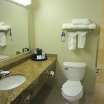 Фотография BEST WESTERN PLUS Chicago Southland