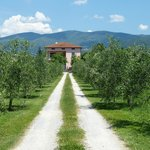 Photo of Agriturismo San Rocco
