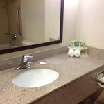Φωτογραφία: Holiday Inn Express Hotel & Suites Port Richey