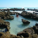 Our own rock pools during low tide