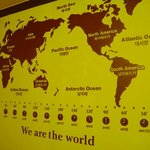 I love this map of the world design on the wall