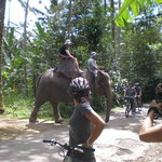 Bali Culture Tour-Day Tours