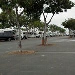Foto de Mission Bay RV Resort