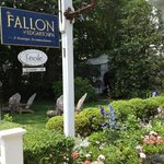 The Fallon of Edgartown照片