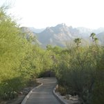 Canyon Ranch in Tucson의 사진