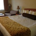 BEST WESTERN PLUS Holiday Hotel照片