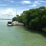 the catamaran which could only be reached by climbing through mangroves and had no sail