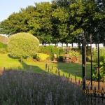 Grounds - Rosebank Farm B&B