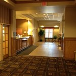 Holiday Inn Chicago-Tinley Park-Convention Center Foto