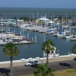 Foto de Holiday Inn Corpus Christi Downtown Marina