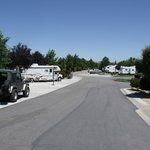 Bilde fra Wine Country RV Resort