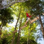 Cross log bridges, zoom down ziplines, swing from a trapeze and more.