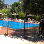 Φωτογραφία: Villaggio Club Le Ginestre