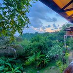 TikiVillas Rainforest Lodge Foto