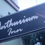 Foto de Anthurium Inn
