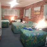 Φωτογραφία: Gold Coast Airport Motel
