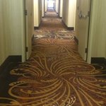 Hampton Inn Cincinnati - Kings Island의 사진