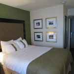 Holiday Inn Metairie New Orleans Airport Foto