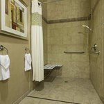 Accessible Suite with Roll-in Shower