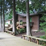 Photo de Whispering Firs B&B and Lodge