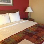 Residence Inn Houston by The Galleria照片