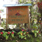 Volcano Fern Forest Retreatの写真