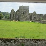 View from room, Cashel Lodge
