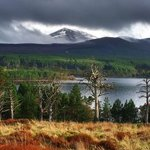 Φωτογραφία: Cairngorm Lodge Youth Hostel (Loch Morlich)