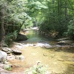 Stream at the South Mountain State Park
